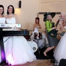 Cruise Wedding and Fuction Band