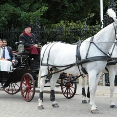 Mersea Island Horse Drawn Wedding Carriages