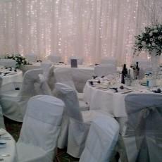 The Dream Wedding Company