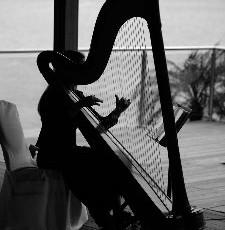 The Wedding Harpist